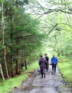 Glencoe_Wood_walk